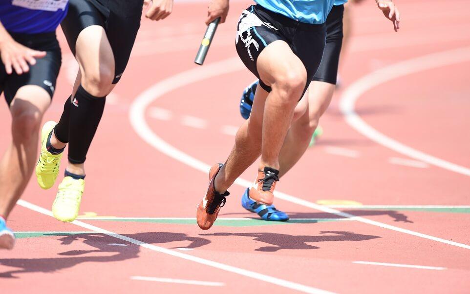 スポーツフード資格人気ランキング